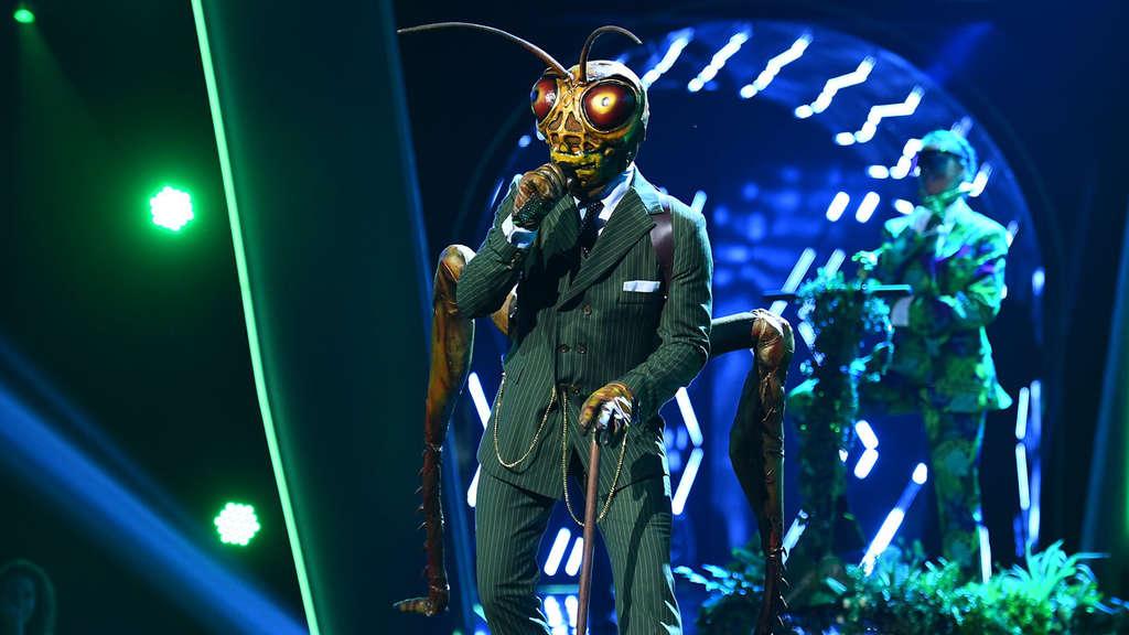 The Masked Singer Nächste Folge